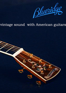 Blueridge Guitar PriceList