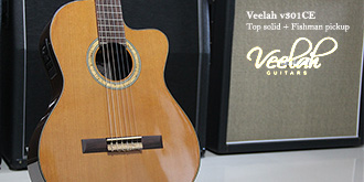 Veelah Nylon Strings
