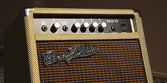 Penny Dollar PAG15 acoustic guitar amp